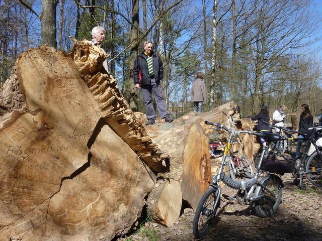 Radtour nach Feuerbach zu den gefällten Bäumen